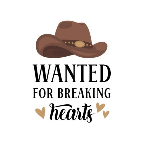 wanted for breaking hearts